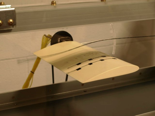 Remotely Controlled Wind Tunnel Experiments For Stem