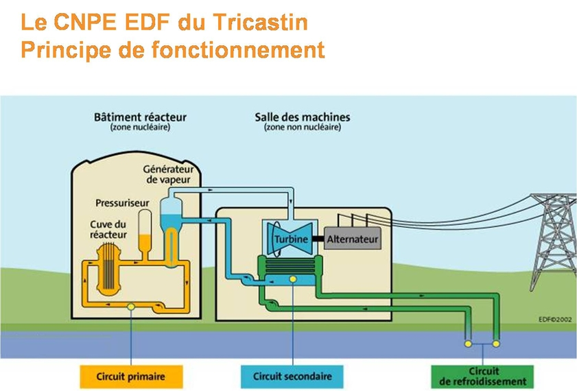 formation nucleaire